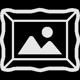 デジタルアーカイブアイコン